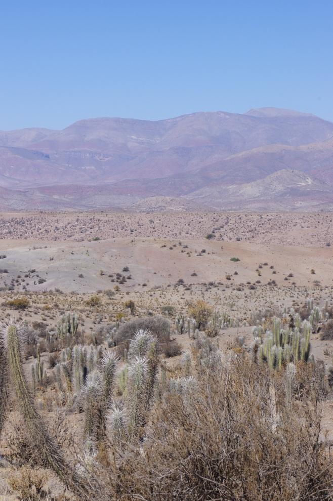 Chile-405