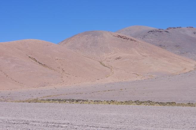 Chile-549